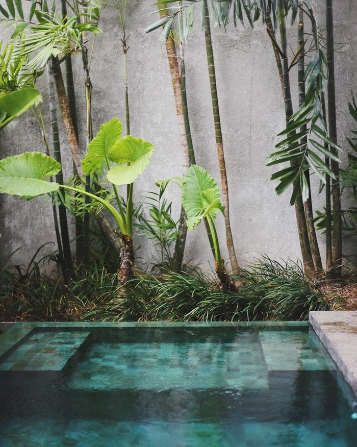 tuin en beton